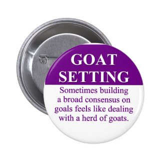 Building Consensus on Goal Setting (3) Pinback Button