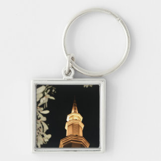 Building dome and leaf frame Silver-Colored square keychain
