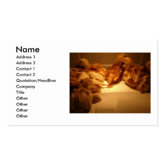 Buiness Cards Double-Sided Standard Business Cards (Pack Of 100)