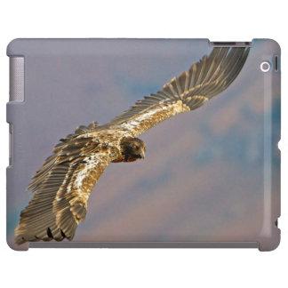 Buitre barbudo juvenil (Gypaetus Barbatus) Funda Para iPad