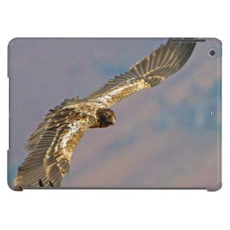 Buitre barbudo juvenil (Gypaetus Barbatus) Funda Para iPad Air