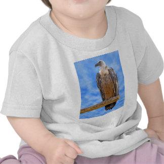 Buitre de Griffon en rama Camisetas