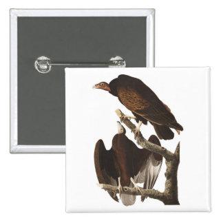 Buitre de Turquía de Audubon Pin