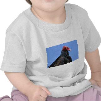 Buitre de Turquía del retrato Camisetas