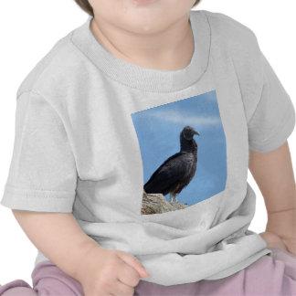 Buitre de Turquía negro - atratus del Coragyps Camisetas