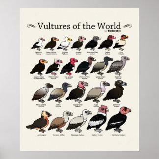 Buitres del mundo por Birdorable Póster