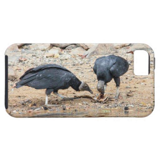 Buitres negros funda para iPhone 5 tough