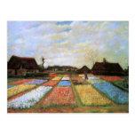 Bulb Fields Holland (F186) Van Gogh Fine Art Postcard