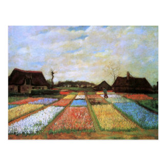 Bulb Fields Holland (F186) Van Gogh Fine Art Postcard