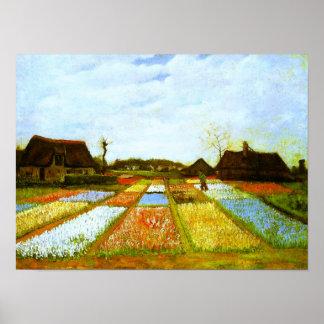 Bulb Fields Holland Van Gogh Fine Art Poster