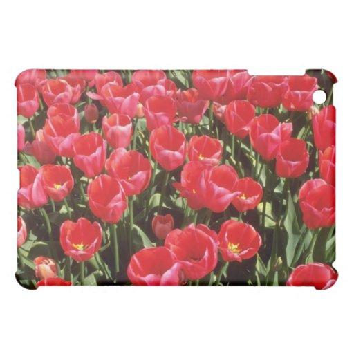 Bulb fields of Netherlands flowers iPad Mini Covers