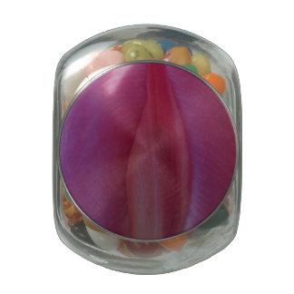 Bulb Garden Glass Jar
