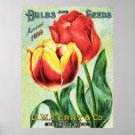 Bulbos y semillas rojos y tulipán amarillo impresiones