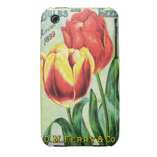Bulbs and Seeds Red and Yellow Tulip iPhone 3 Cover