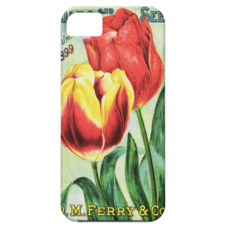 Bulbs and Seeds Red and Yellow Tulip iPhone SE/5/5s Case