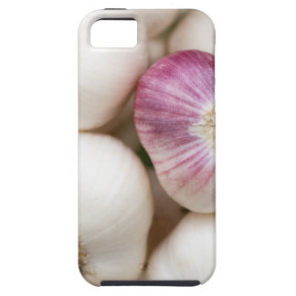 Bulbs of Garlic iPhone SE/5/5s Case