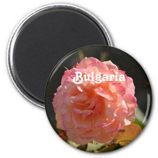 Bulgarian Rose Magnet