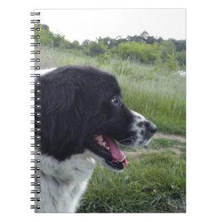 Bulgarian Sheepdog Spiral Notebook