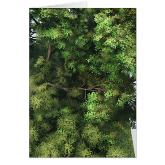 Bulky conifer tree card