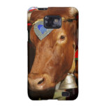 Bull and bell galaxy SII cover