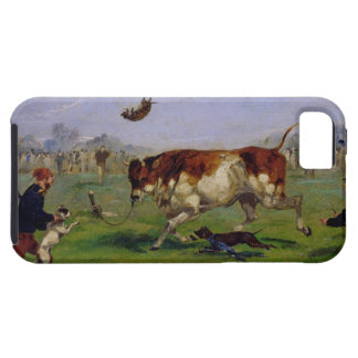Bull Baiting (oil on paper laid on panel) iPhone SE/5/5s Case