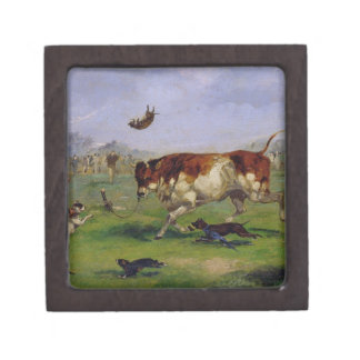 Bull Baiting (oil on paper laid on panel) Premium Jewelry Box