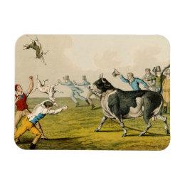 'Bull Baiting', pub. by Thomas McLean, 1820, (prin Magnet