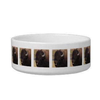 bull bison talking bowl