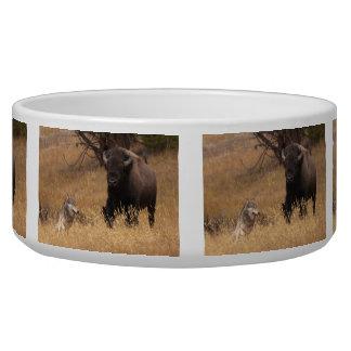 Bull Bison & Wolf Bowl