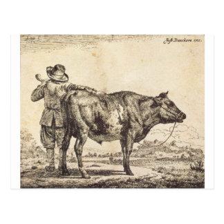Bull by Adriaen van de Velde Postcard
