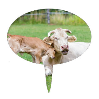 Bull calf loves mother cow in meadow cake topper