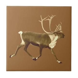 Bull Caribou - Sepia Tile