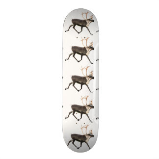 Bull Caribou Skateboard