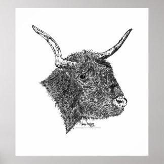 Bull con la pluma de los cuernos y el dibujo de la póster