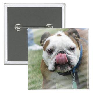 Bull Dog Designs Square Button