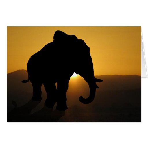 Bull elephant card