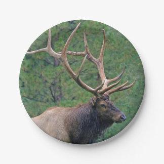 Bull elk and pines paper plate