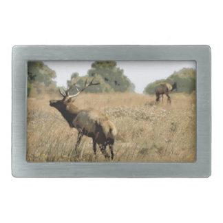 Bull Elk Belt Buckle