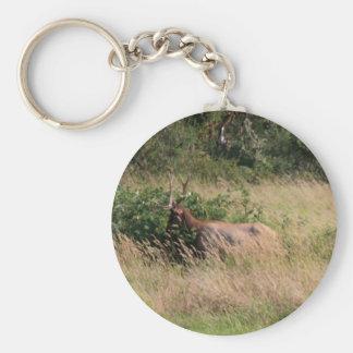 Bull Elk & Blackberries Keychain