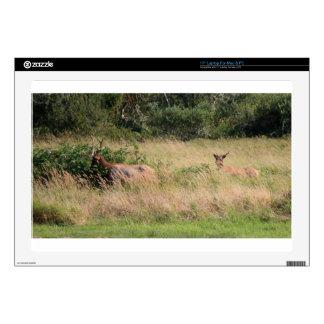 "Bull Elk & Blackberries Decals For 17"" Laptops"