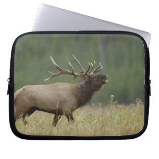 Bull Elk bugling, Yellowstone NP, Wyoming Laptop Computer Sleeves
