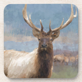 Bull elk by the river coaster