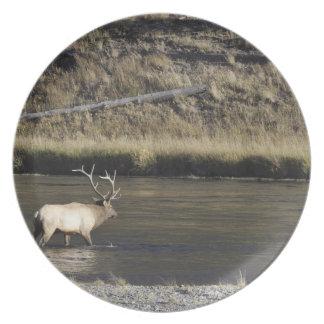 Bull Elk Crossing Madison River, Yellowstone 2 Melamine Plate