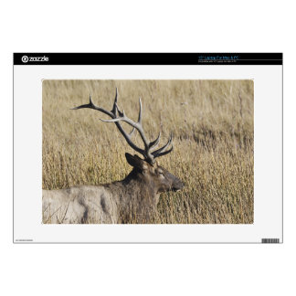 """Bull Elk Crossing Madison River, Yellowstone 3 Decals For 15"""" Laptops"""