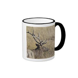 Bull Elk Crossing Madison River Yellowstone 3 Coffee Mug