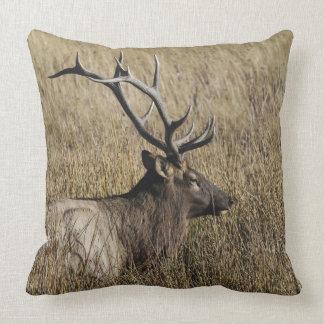 Bull Elk Crossing Madison River, Yellowstone Throw Pillow