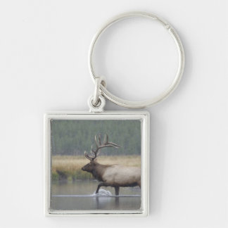 Bull Elk crossing river in snowstorm, Silver-Colored Square Keychain