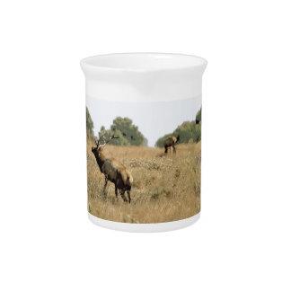 Bull Elk Drink Pitchers