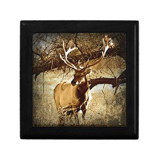 Bull Elk Jewelry Boxes