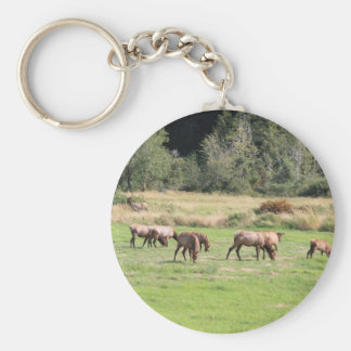 Bull Elk & Harem Basic Round Button Keychain